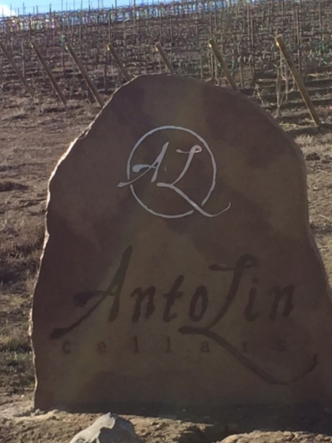 AntoLin Estate Vineyard